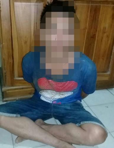 Terduga Pelaku Pembobol Rumah dan Mencuri Celengan Di Tangkap Polisi